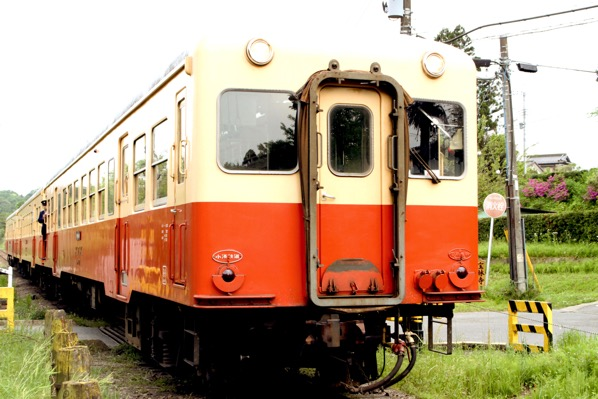 Yorokeikoku 39