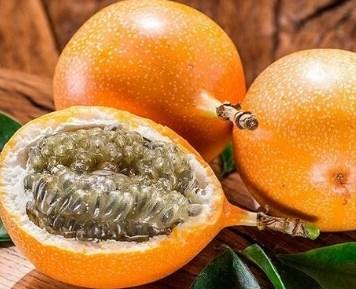 Granadilla Passiflora ligularis 6