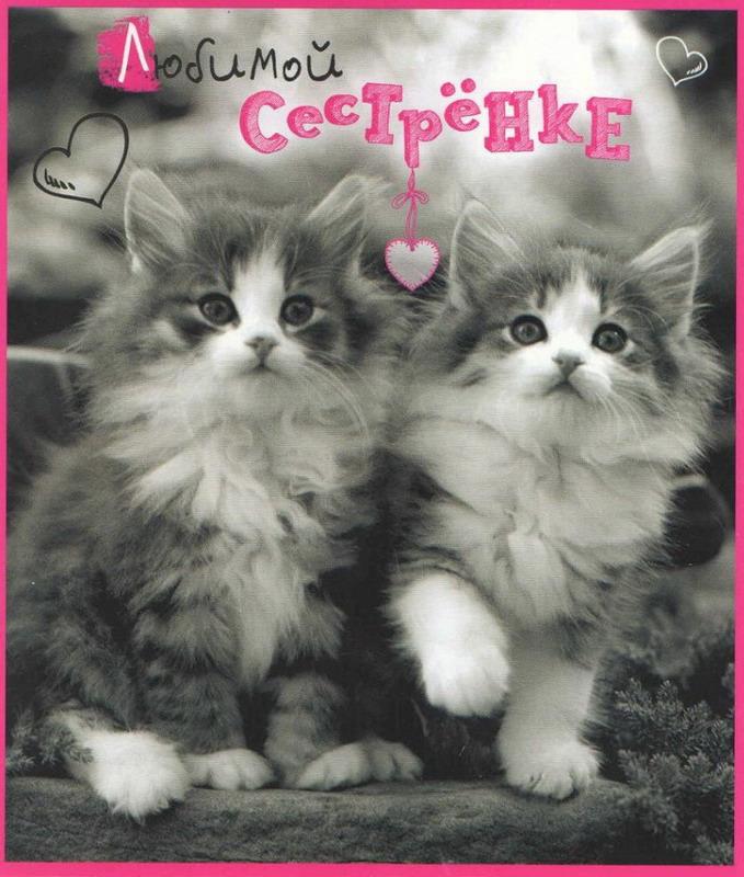 Прекрасной сестре открытка