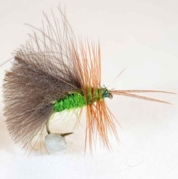high rider cdc sedge -green 12