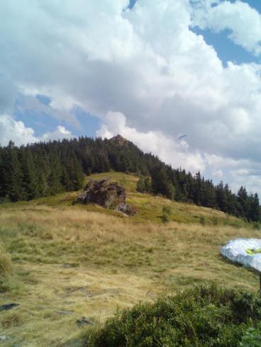 Osserwiese