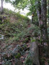 Einsteig Baierweg