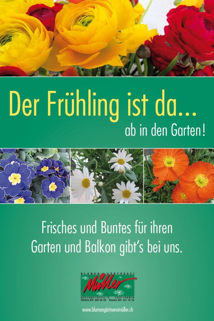 Blumen-Gärtnerei Müller Frühling Frühlingsblumen ab in den Garten
