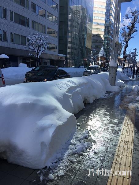 札幌の街中