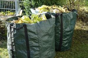 dugnad rydding høst vår