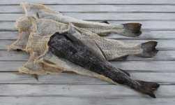 klippfisk