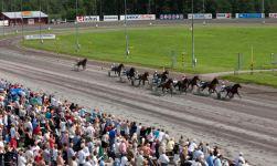 rikstoto hest trav