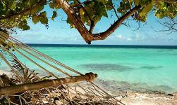 ving maldivene