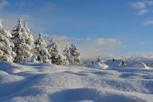vinter ferie
