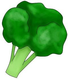 ブロッコリーの賞味期限