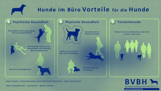 Bürohunde Vorteile für Hunde