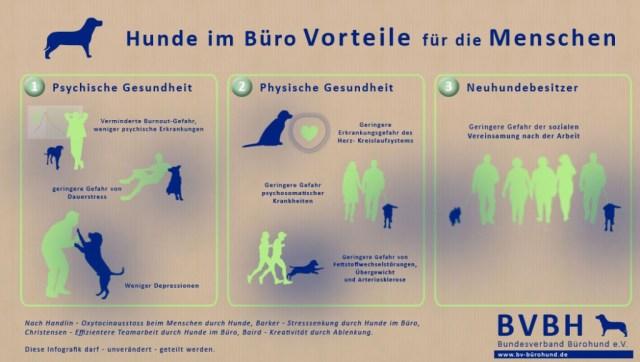 Bürohunde Vorteile Menschen