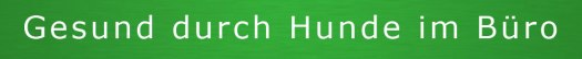 BVBH-Banner Gesund durch Hunde im Büro