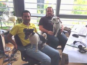Domain Factory Bürohunde Monthy und Milo