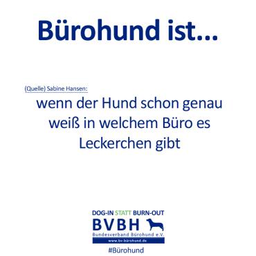 B-Hund_ist_Hansen