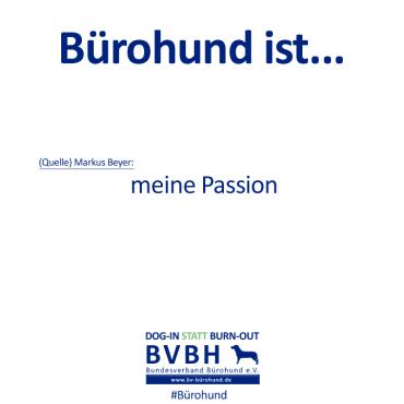 B-Hund_ist_by