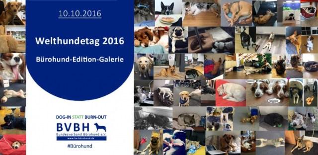 Welthundetag 2016 - Bürohund-Edition-Galerie