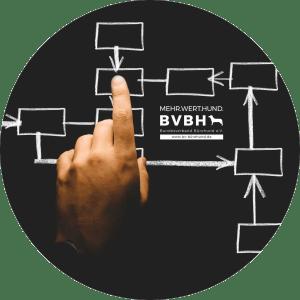BVBH-Lösungen für die Integration von Bürohunden
