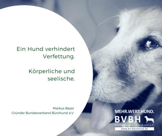 Ein Hund verhindert Verfettung