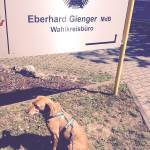 Bürohundtag Eberhard Gienger MdB