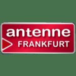 Antenne Frankfurt Bürohund