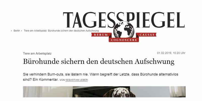Bürohunde sichern den deutschen Aufschwung