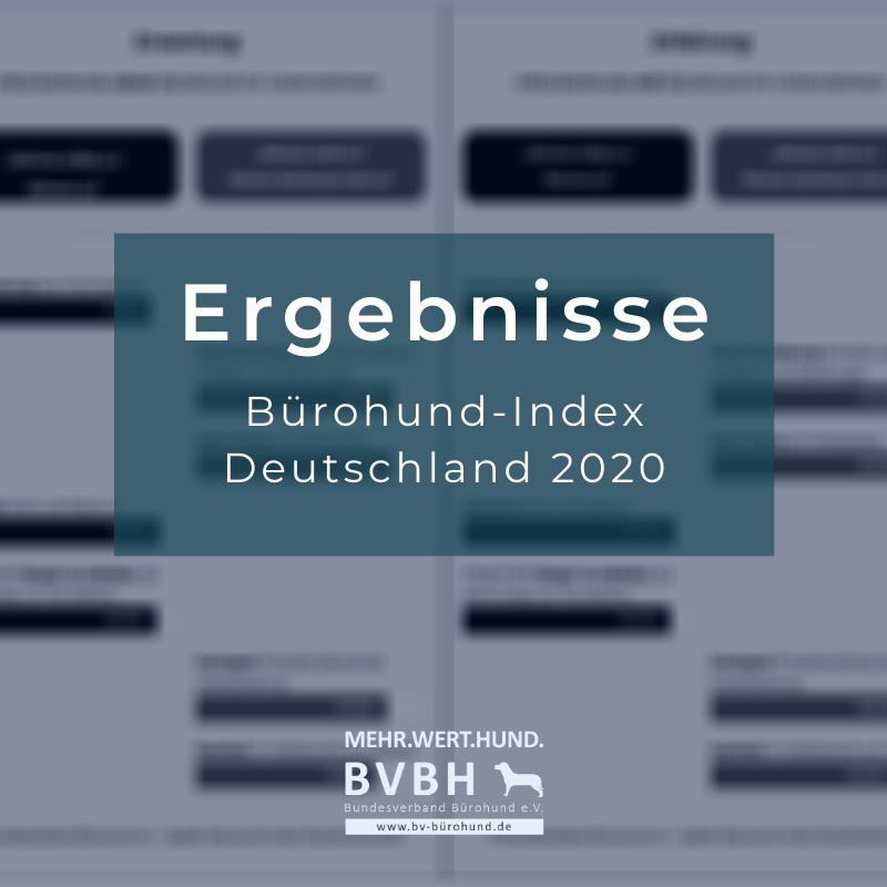 Ergebnisse Bürohund-Index Deutschland 2020