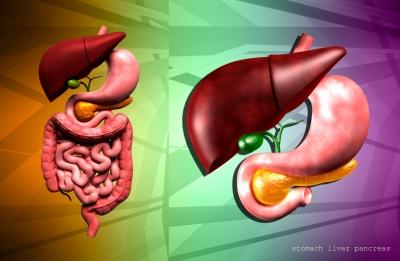 鳥肌胃炎 スキルス胃がん