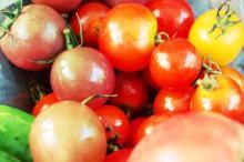 トマト 妊婦さん