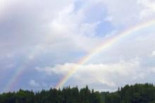 虹 色 順番