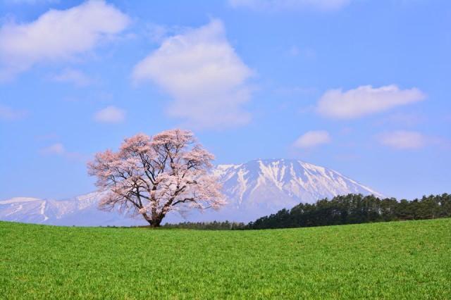 季春の候 意味