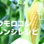 トウモロコシ アレンジレシピ
