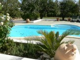 image of the swimming pool in our garden at Cortijo Las Viñas