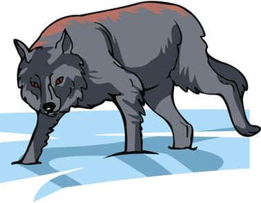 lobo traicioneros