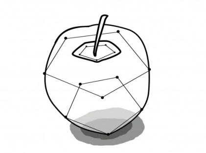 リンゴの透視図
