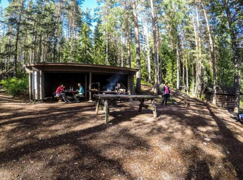 Как в Финляндии победили мусор в лесах