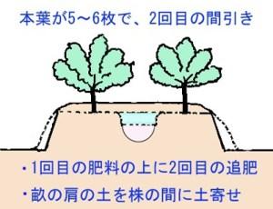mabiki-tuihi (2)