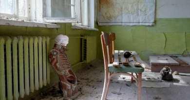 Chernobyl es reclamada por la naturaleza