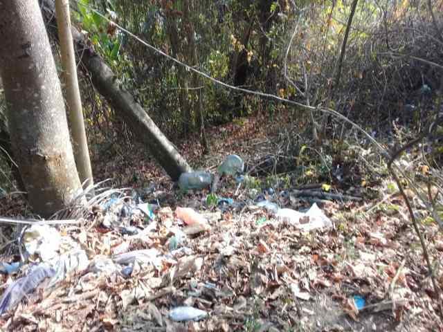 Terrenos baldíos en Carrizal convertidos en vertederos improvisados