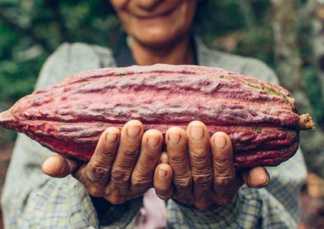 Venezuela busca posicionar productos originarios en el mercado mundial