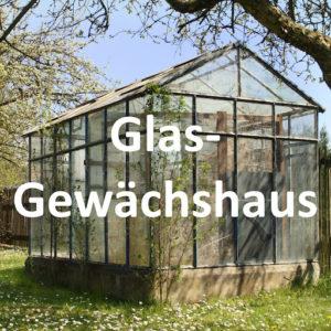 Super Kleines Gewächshaus für Den Garten – Meiner Tomaten Gewächshaus GK99