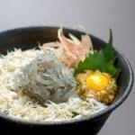 塩辛専門店「駿河屋賀兵衛」の生シラス丼「釜揚げシラス丼」