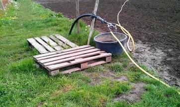 Regenwasser sinnvoll nutzen