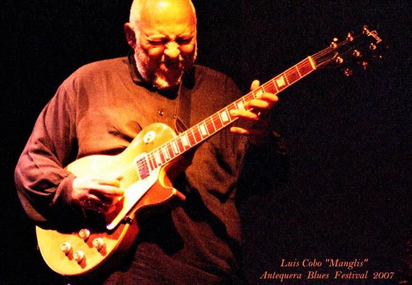 Luis Cobo Manglis Antequera Blues Festival 2007