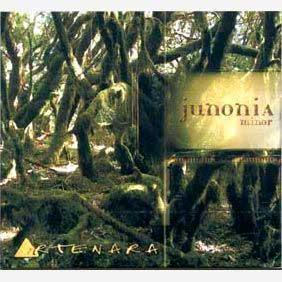Junonia Minor (Canarian World Music) 2003