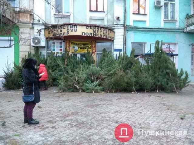 Одесситы сдали на переработку почти 20 тысяч елок и получили столько же конфет