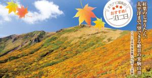 紅葉のじゅうたん、 太平洋まで一望できる絶景の栗駒山頂|くりこま高原温泉郷ハイルザーム栗駒|まちナビ編集部おすすめの一泊二日