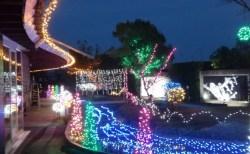 【12月2日(日)〜1月6日(日)】もくもくランドライトアップ|冬のもくもくランドの夜を、ライトが美しく彩ります。