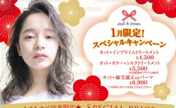 Agu hair shall  アグヘアー登米市佐沼店|1月限定クーポン★special price!!上手に使って綺麗になろう!当日予約OK!