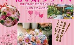 花を贈ろう!!感謝の気持ちをカタチにかえて大切な人に伝えたい…│サトー園芸店【本吉郡三陸町】│いつもの感謝の気持ちをお花で‼